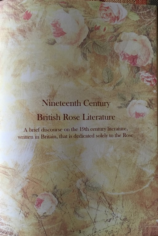 Article on the rose