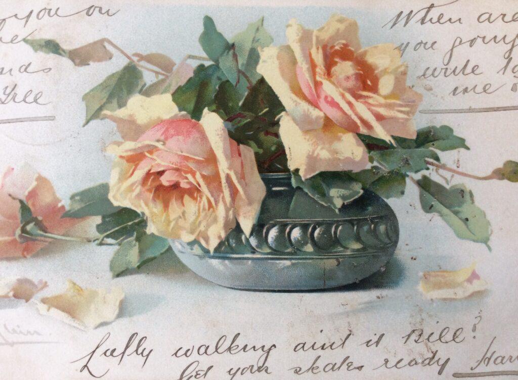 Catharine Klein postcard