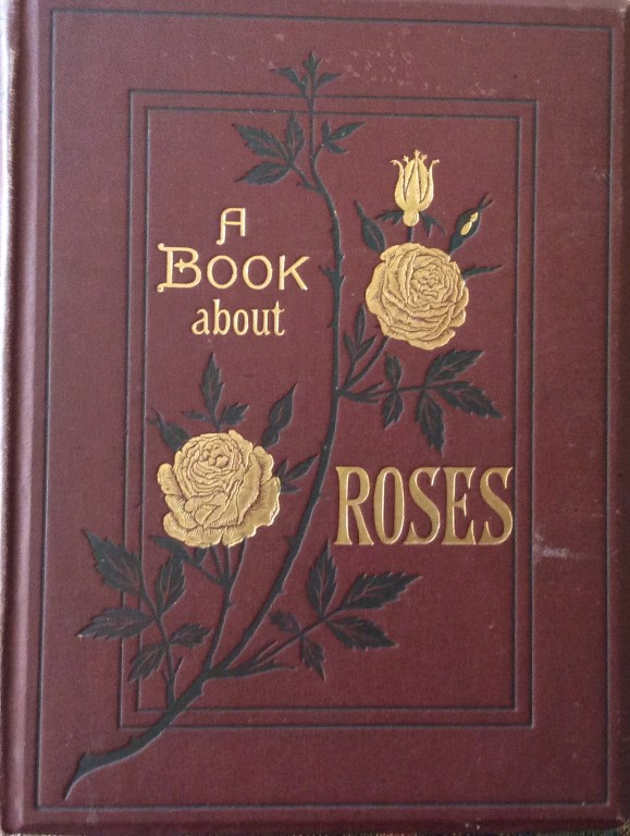 The oldest rose book