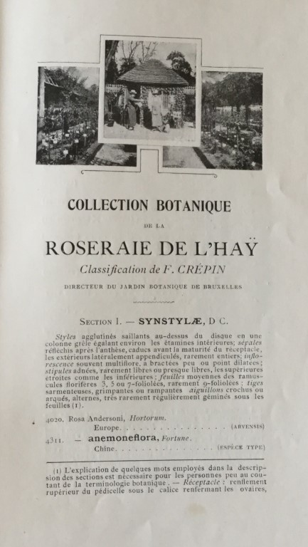 Catalogue of rosery l'Hay France