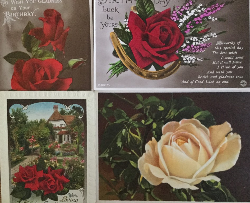 Photos or paintings of roses