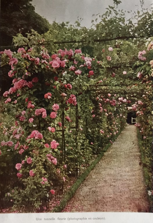 Rose Garden, France