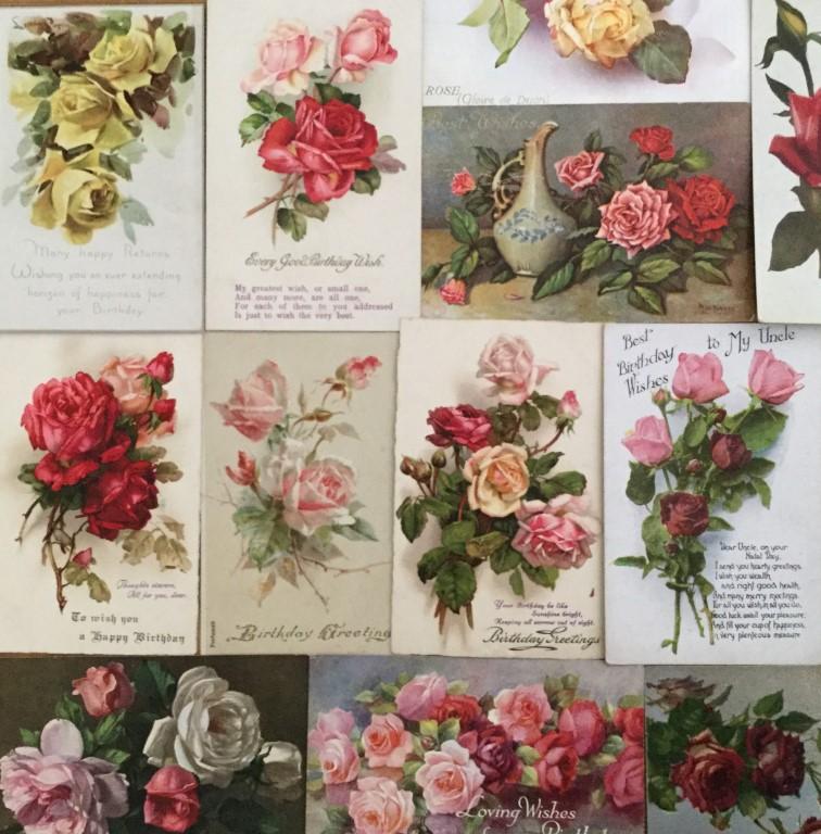 Rose postcards