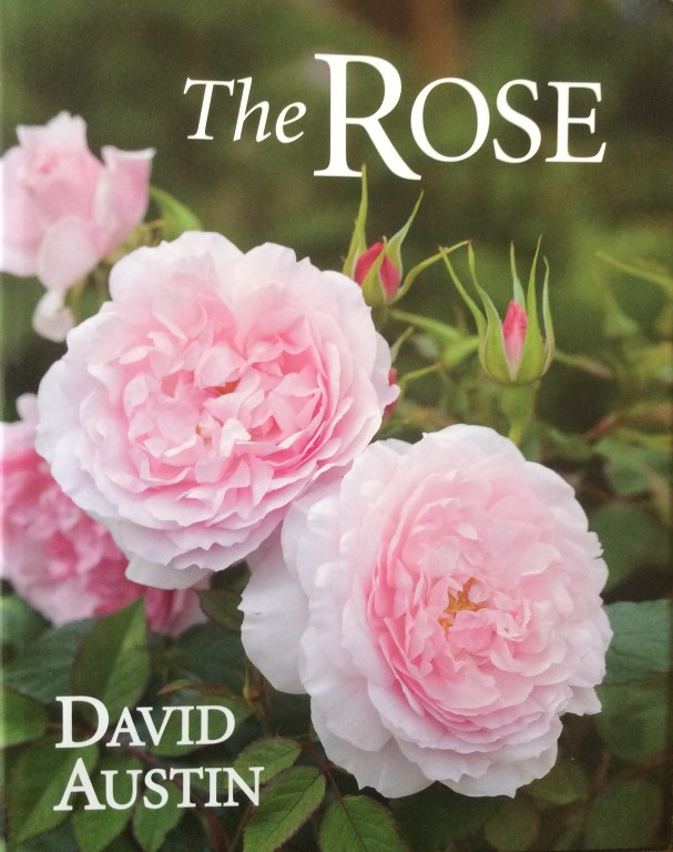 The Rose.  Book by David Austin.