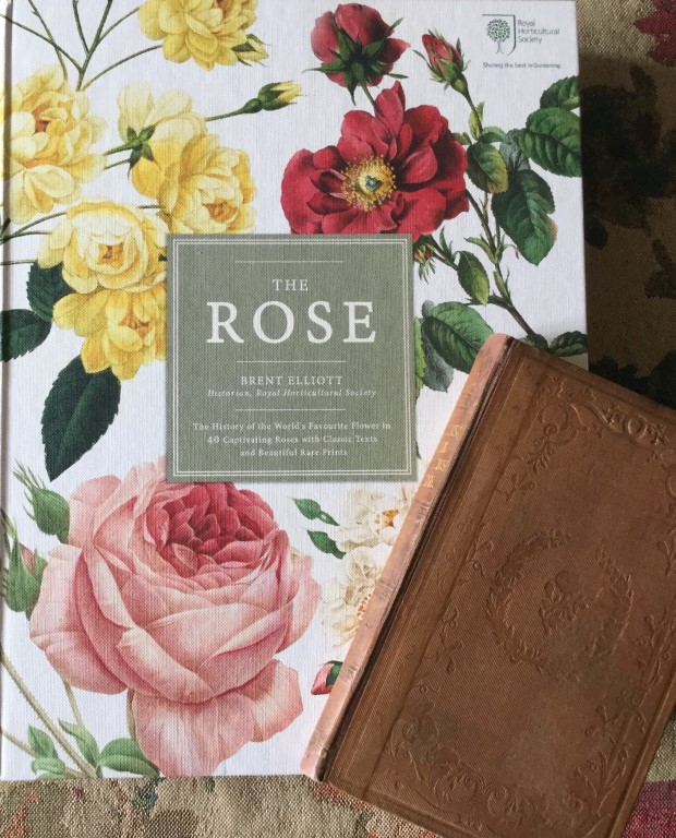 Two rose books.
