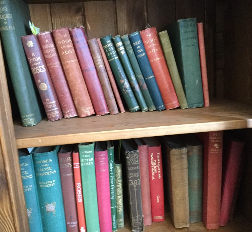 Some of the Victorian and pre first World War books in The Rosarian Library.
