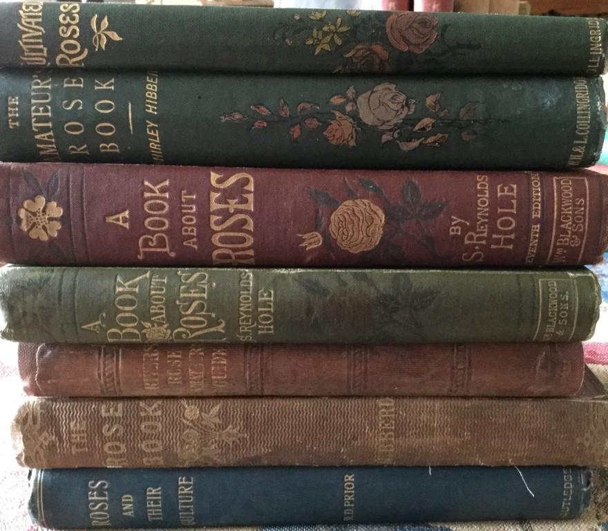 Victorian Rose Books